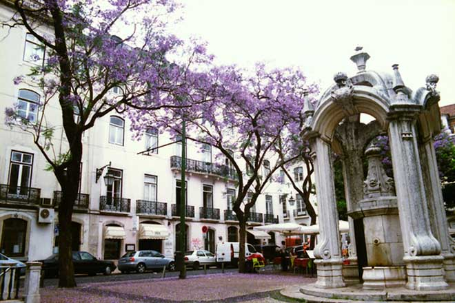 Largo_do_Carmo_Recolectores